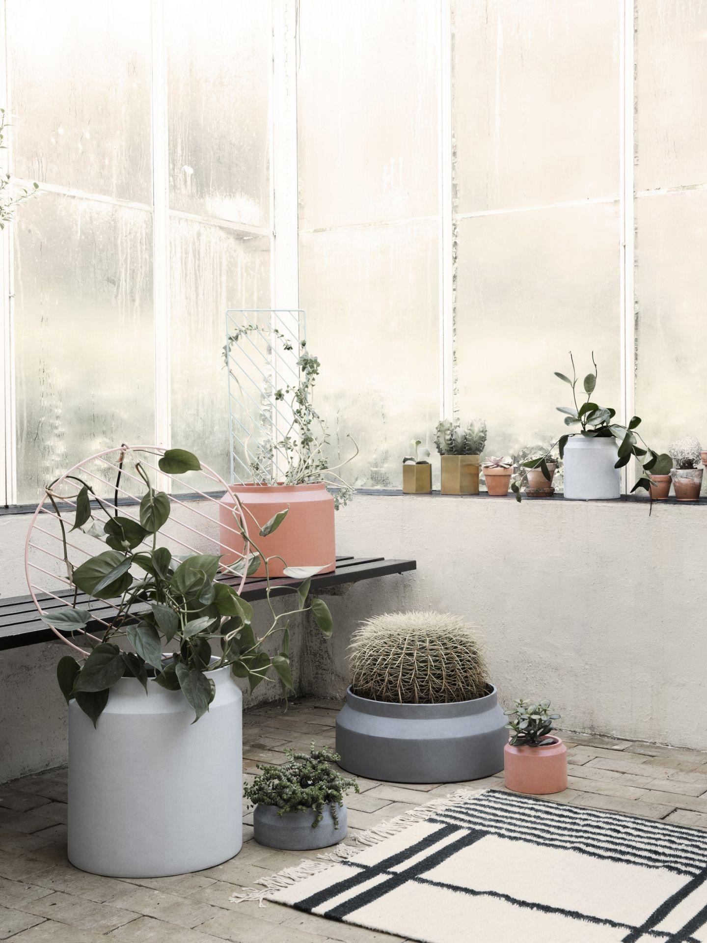 Moderní betonové květináče jsou luxusním prvkem