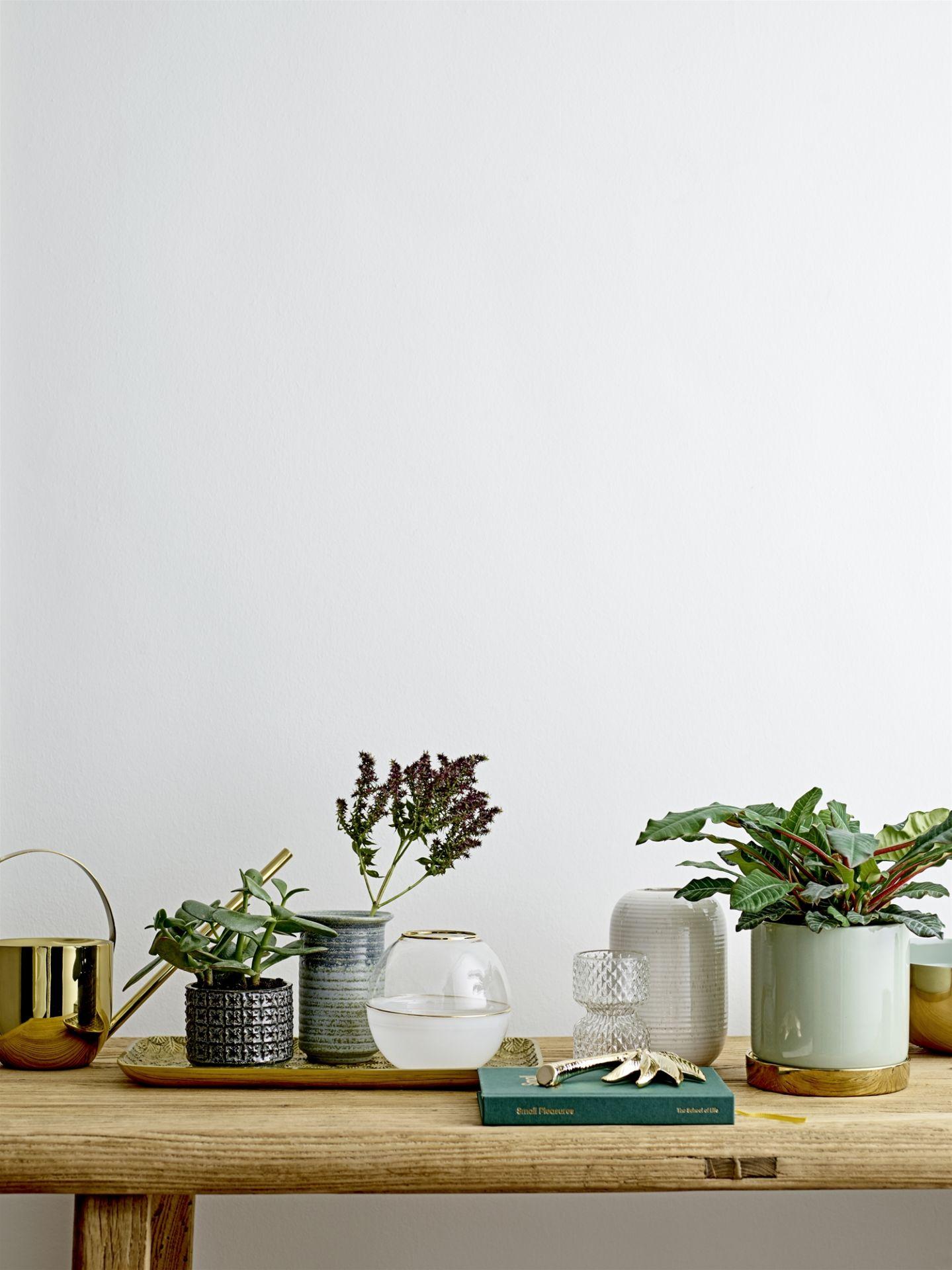 Květináč jako designová záležitost