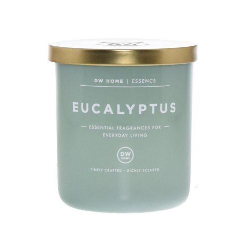 dw HOME / Vonná svička v skle Eucalyptus 264 g