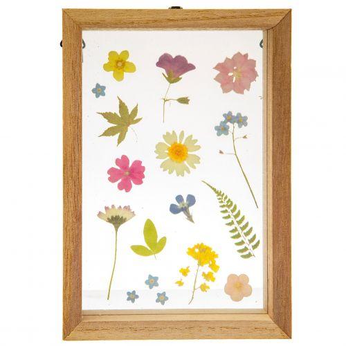 sass & belle / Drevený rámček Pressed Floating Flowers