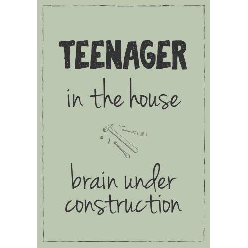 IB LAURSEN / Plechová ceduľa Teenager in the house