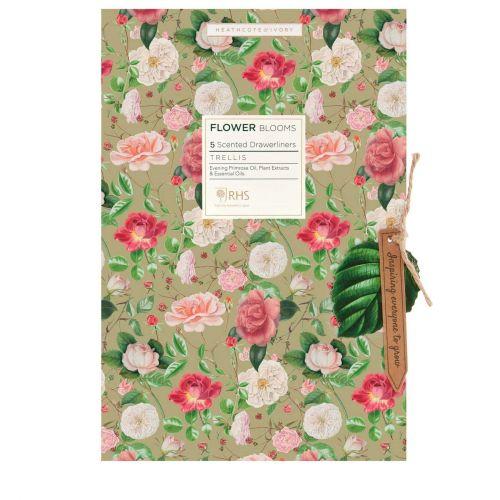 HEATHCOTE & IVORY / Vonné listy do skrine Flower Blooms - 5 ks