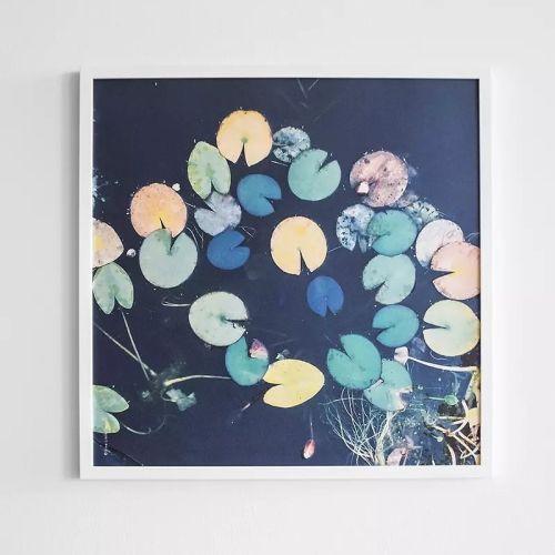 Fine Little Day / Plagát Water lilies 50x50 cm