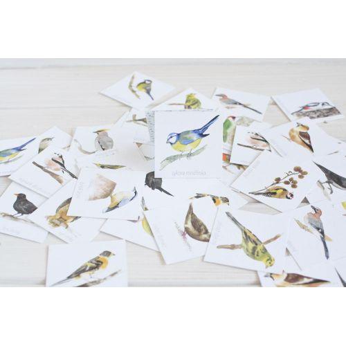 MANKAI Paper / Papierové pexeso Vtáčiky z našich kŕmidiel