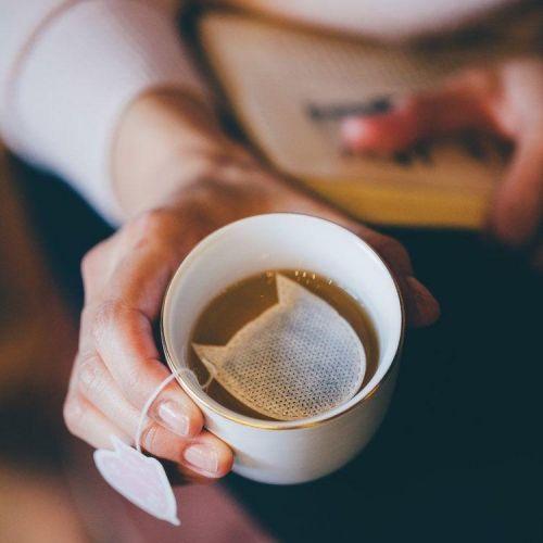 TEA HERITAGE / Zelený čaj s jazmínom Sachets Chats 5 ks