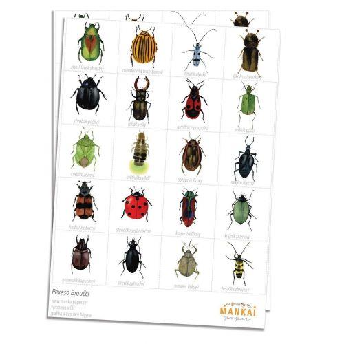 MANKAI Paper / Papierové pexeso Beetles