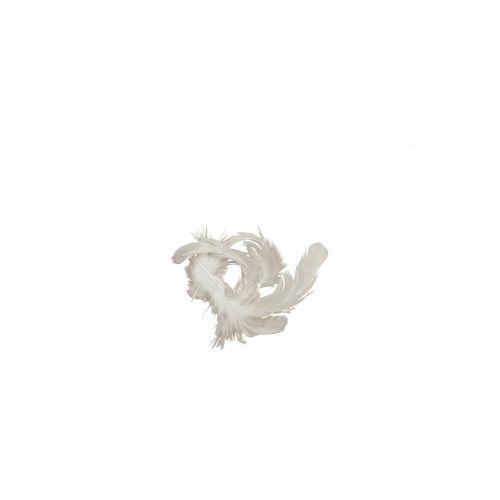 MADAM STOLTZ / Dekoratívne pierka White 5 gr