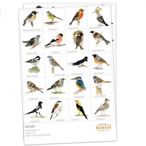 MANKAI Paper / Pexeso Naše Vtáčiky A4