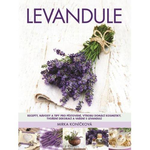 / Levandule - Recepty, návody, tipy pro pěstování, výrobu domácí kosmetiky, tvoření dekorací, vaření