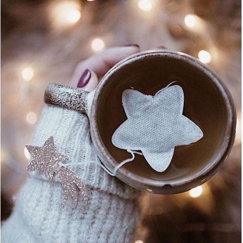 TEA HERITAGE / Zelený čaj s jazmínom Star Jasmine 5 ks