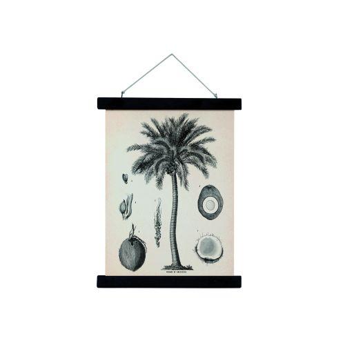 HK living / Plátený obraz s rámom Palm Tree M