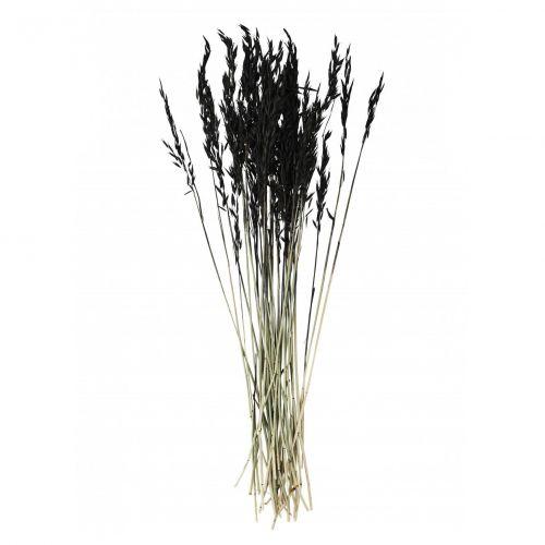 MADAM STOLTZ / Dekoratívne sušené kvety Black 85cm