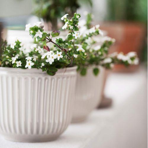 KÄHLER / Porcelánový obal na kvetináč Hammershøi Unglazed