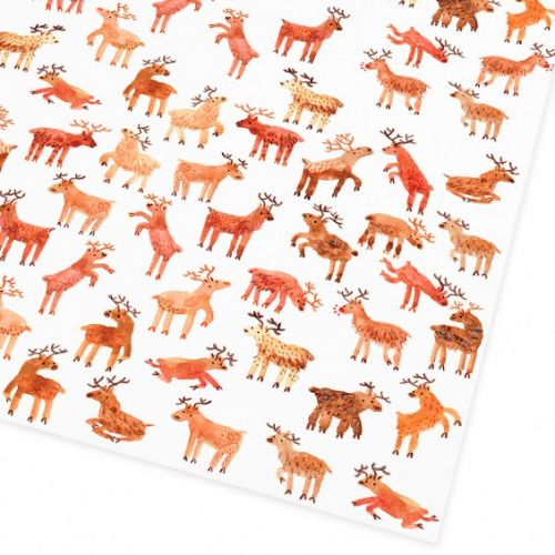 Ohh Deer / Balicí papír Reindeer