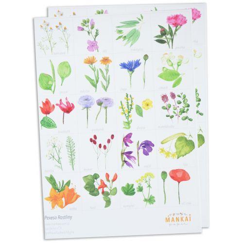 MANKAI Paper / Papierové pexeso Meadow Plants