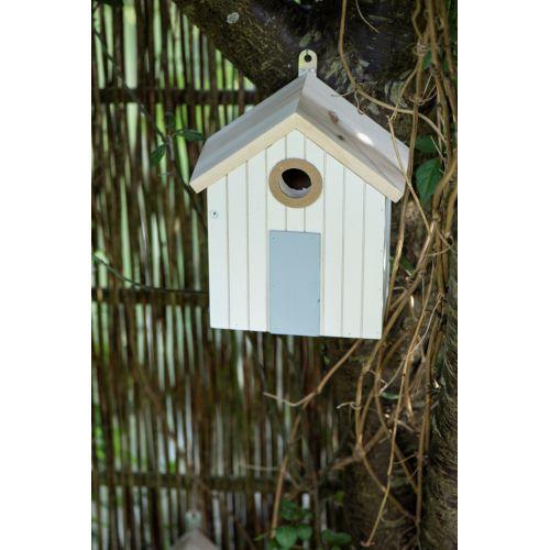 Pták jménem Václav se občas do centra, kde se ho ujali, když vypadl z hnízda, vrací.