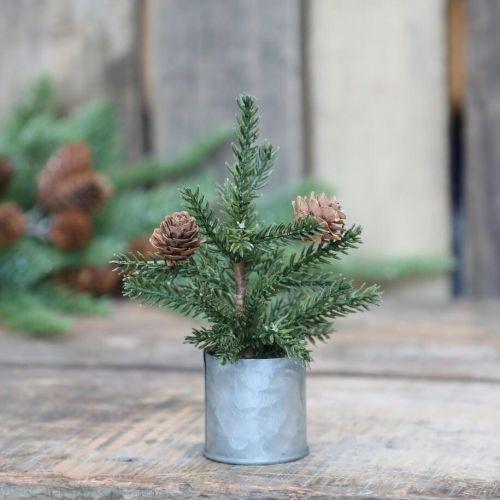 Chic Antique / Dekoratívny stromček Pine Tree Zinc Pot 16 cm