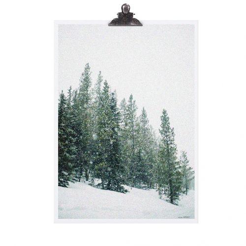 TAFELGUT / Plagát Forest 30x42 cm