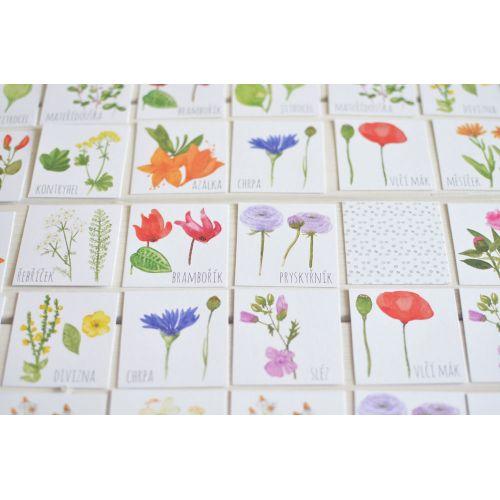 Papírové pexeso Meadow Plants