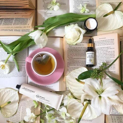Zelený čaj s jasmínem Coeur Paillette 5 ks