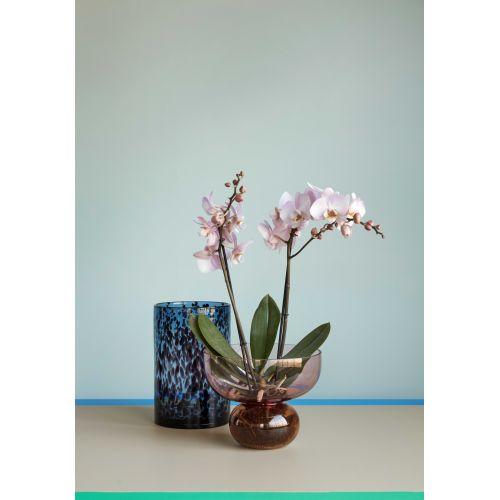 Skleněná váza Rose/Amber 20cm