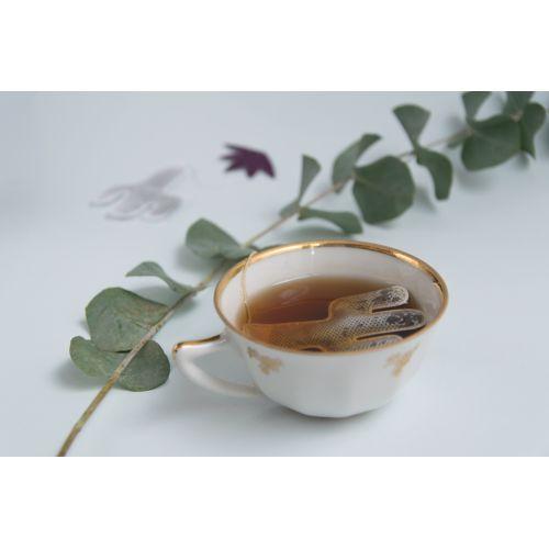 Zelený čaj s jasmínem Cactus 5 ks