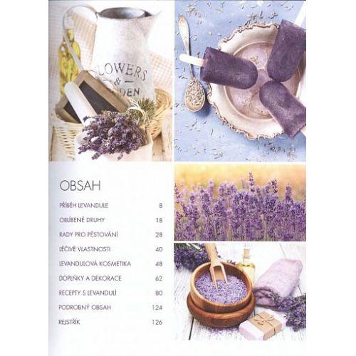 Levandule - Recepty, návody a tipy pro pěstování, výrobu domácí kosmetiky, tvoření dekorací a vaření