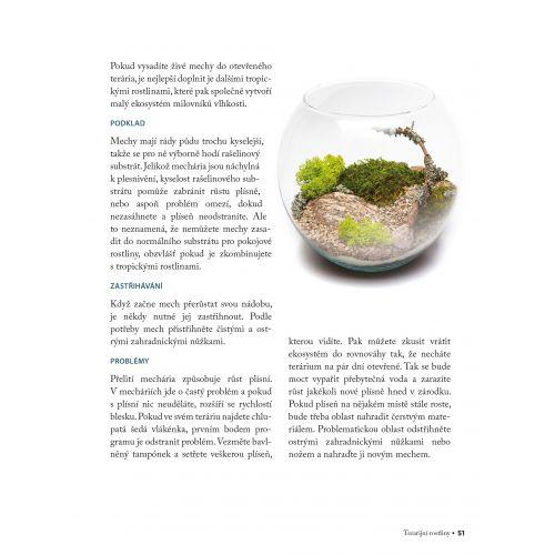 Domácí minizahrádky - 33 kreativních terárií s rostlinkami
