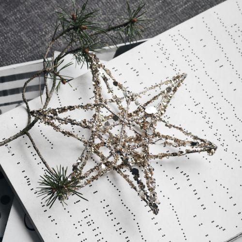 Závěsná vánoční dekorace Star Gold