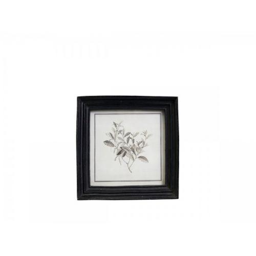 Botanický obrázek v rámečku Black 16x16 cm