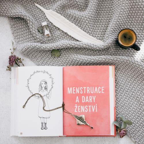 Deník mámy a dcery - Lucie Harnošová