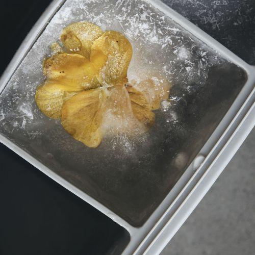 Silikonová forma na tvorbu ledu Grey
