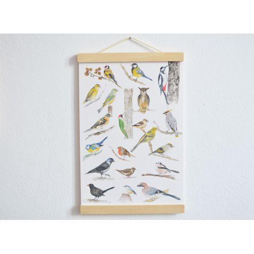 Plakát s ptáčky A3 Birds