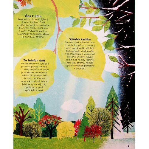 Stromy – Jejich kouzlo a tajemství