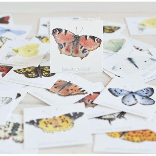 Papírové pexeso Motýli II