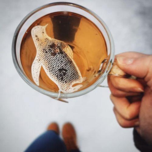 Vánoční čaj Penguin 5 ks