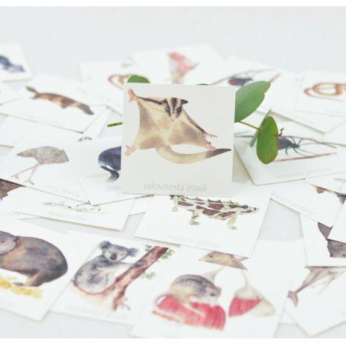 Papírové pexeso Zvířátka Austrálie