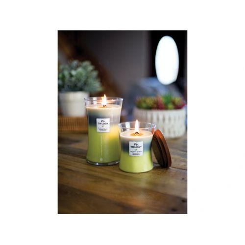 Vonná svíčka WoodWick Trilogy - Woodland Shade 275g