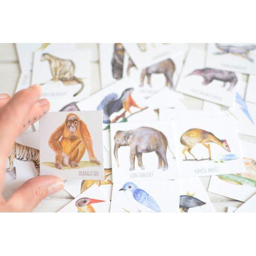 Papírové pexeso Indian Animals