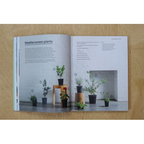Kniha - Green: Plants for Small Spaces, Indoors and Out, Jason Chongue