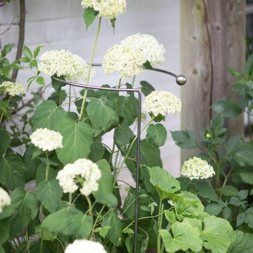 Kovová podpora pro zahradní rostliny Hoop Plant Support