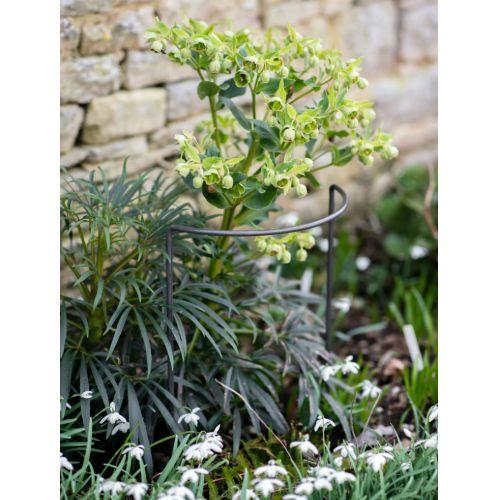 Ocelová podpěra pro rostliny Charlbury - Set 3 ks