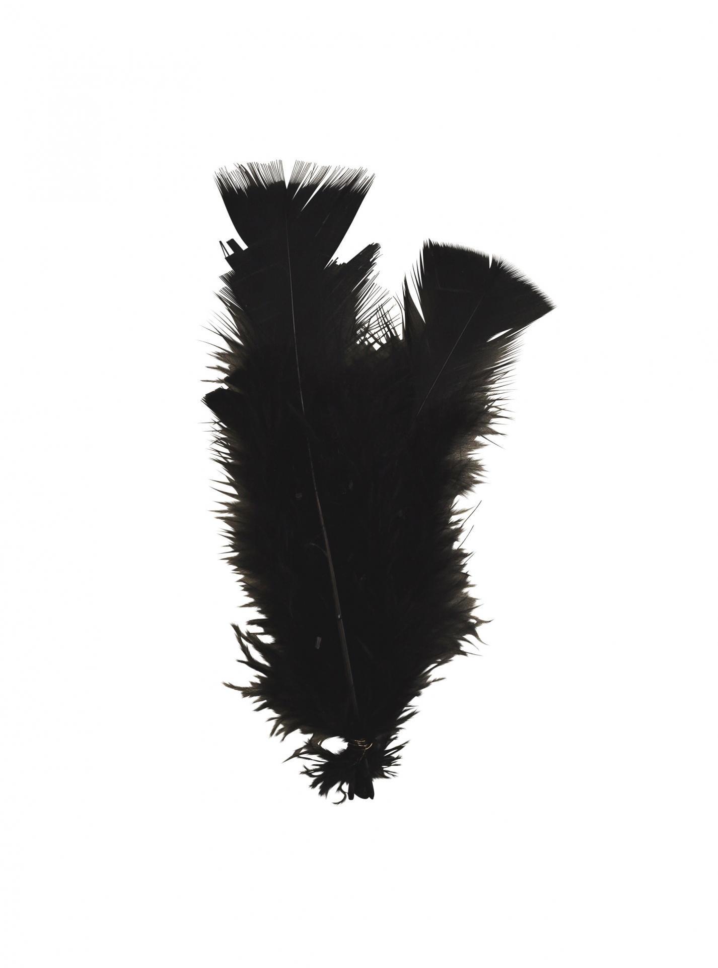 MADAM STOLTZ Dekorativní peříčka Black - 10ks, černá barva