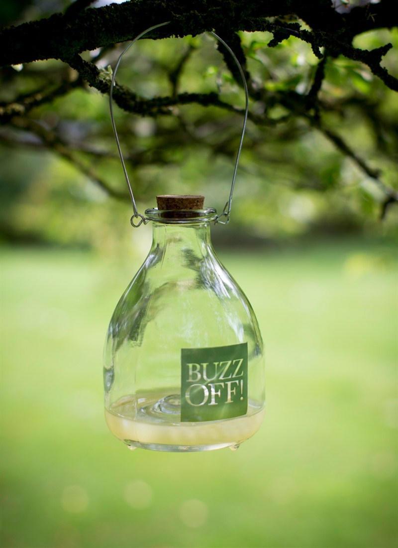 Garden Trading Lapač vos Buzz Off, čirá barva, sklo