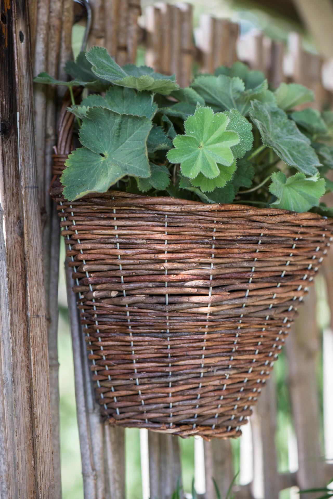 IB LAURSEN Nástěnný proutěný koš Willow, přírodní barva, proutí