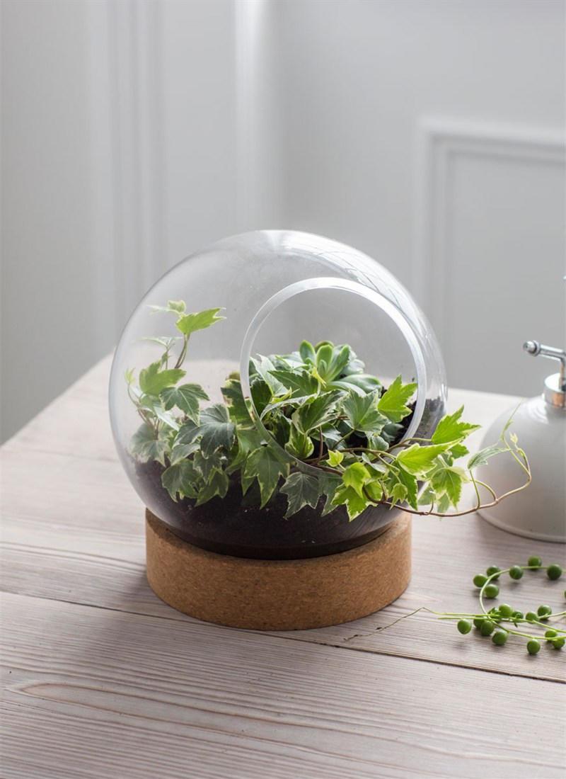 Garden Trading Skleněné terárium s korkem, čirá barva, sklo