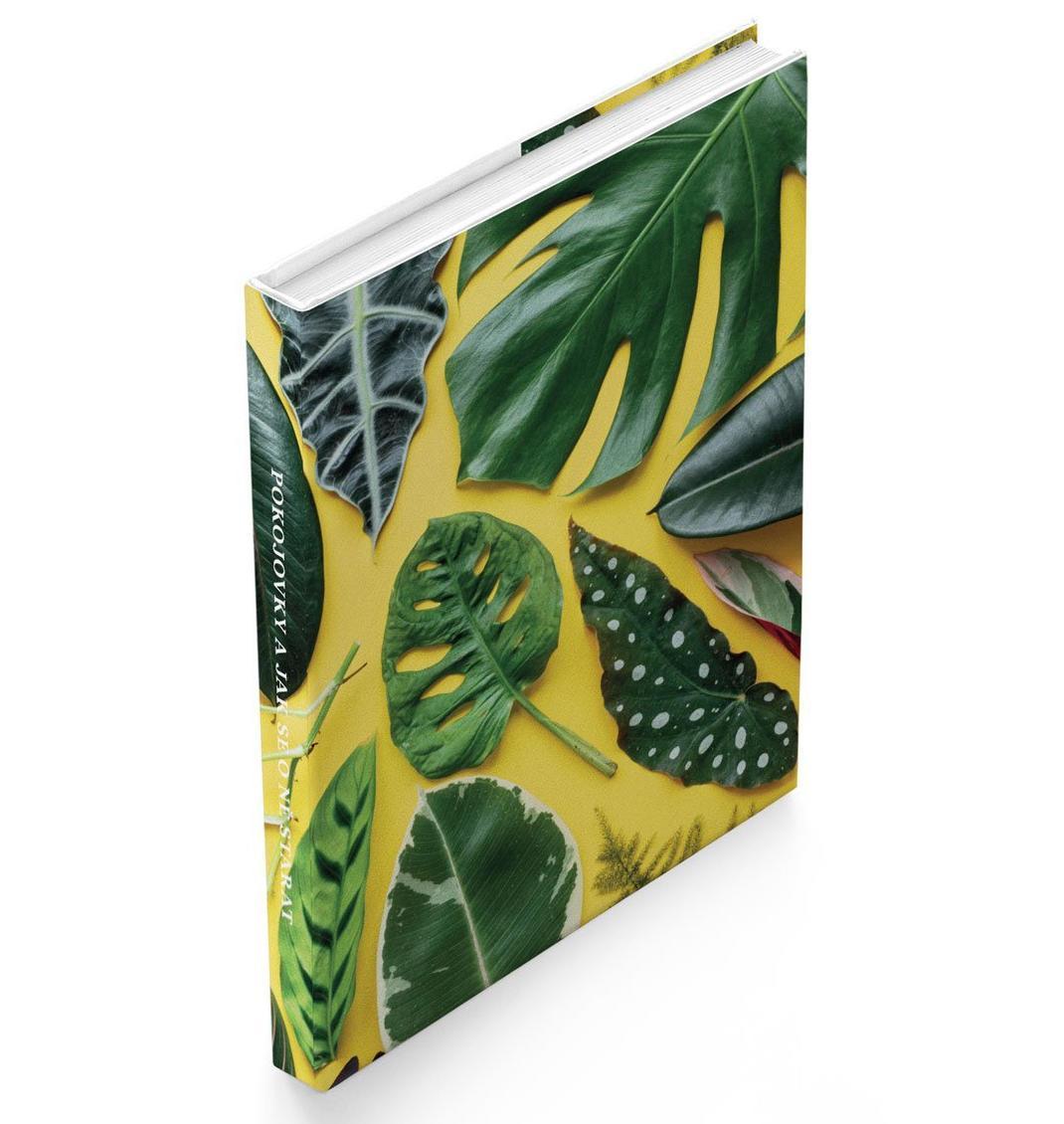 Kniha Pokojovky - Jak se o ně starat, multi barva, papír
