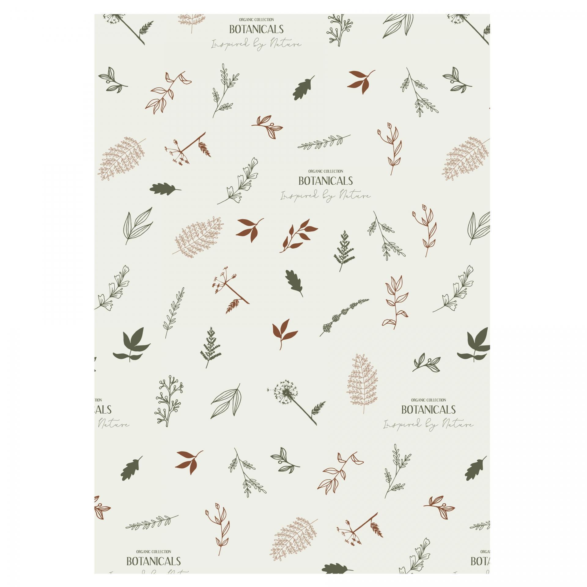 IB LAURSEN Balicí papír Botanicals - 10 m, bílá barva, hnědá barva, papír