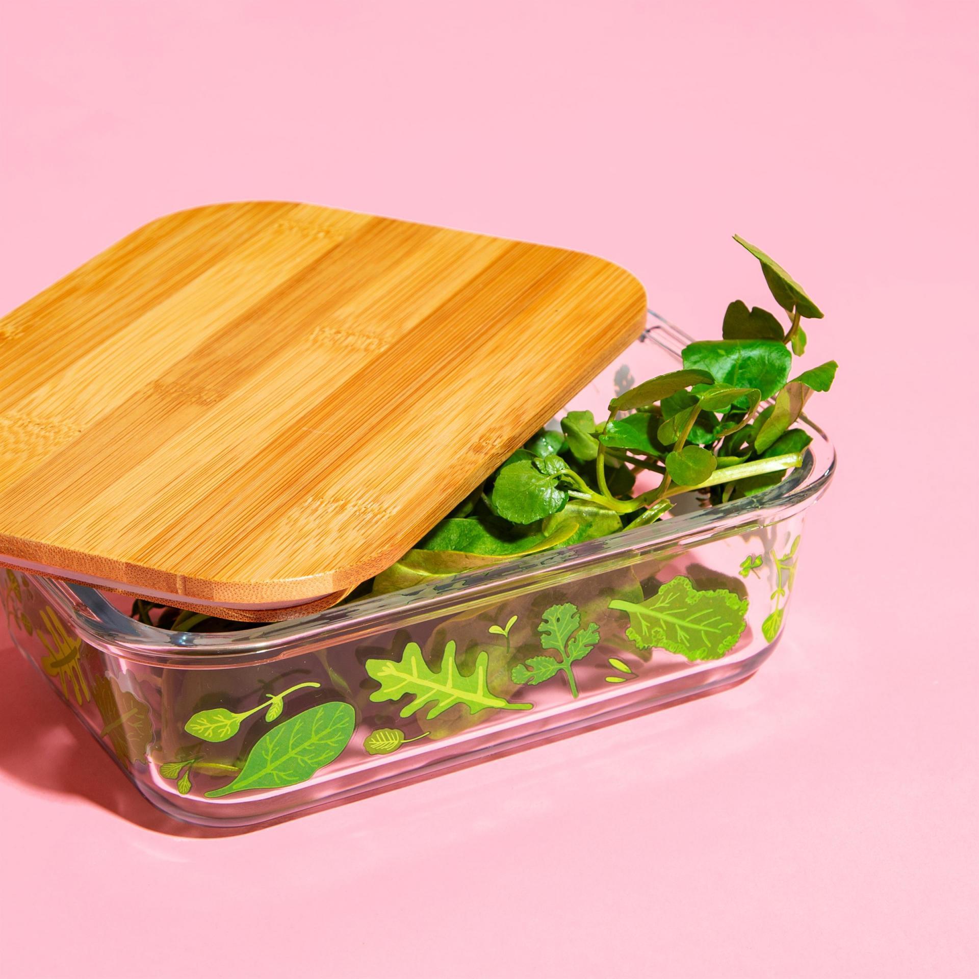 sass & belle Dóza na potraviny Powered By Plants, zelená barva, čirá barva, přírodní barva, sklo, dřevo