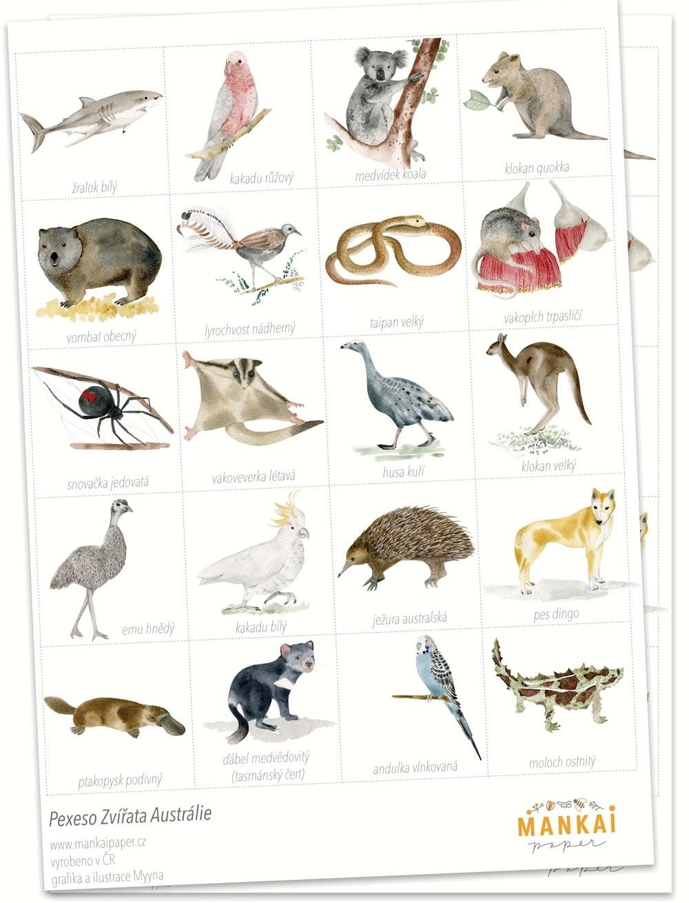 MANKAI Paper Papírové pexeso Zvířátka Austrálie, multi barva, papír
